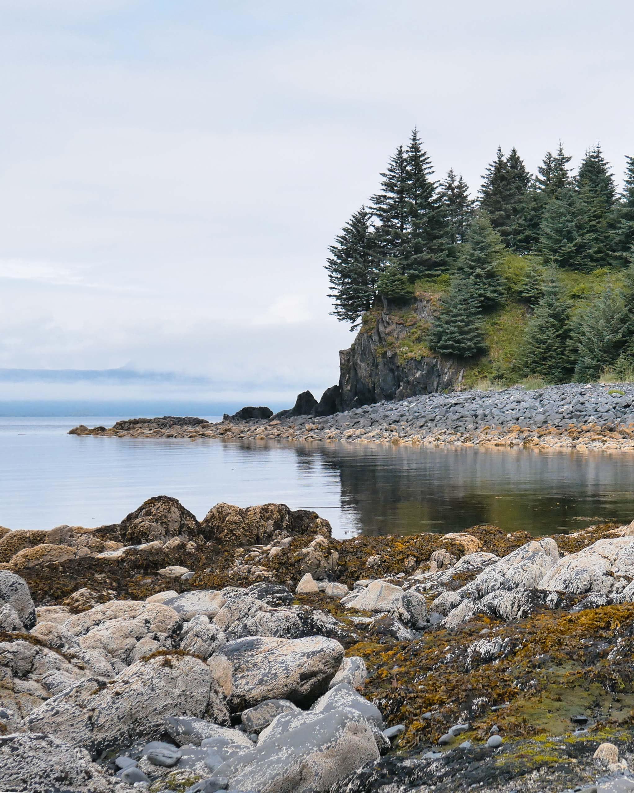 Image of the coastline